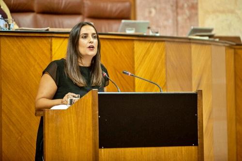 """Jurado (PP): """"El Gobierno andaluz trabaja para salvar vidas"""""""