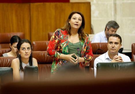Proyecto, presupuesto y terrenos hace 10 años pero Roquetas sigue sin hospital