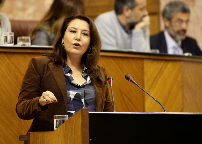El Partido Popular pide un Plan Especial para la Atención al Flujo Migratorio en Andalucía