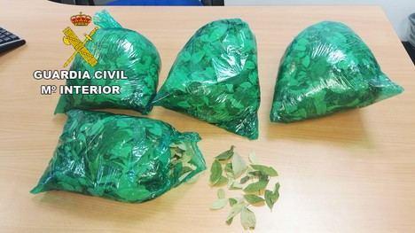 La Guardia Civil interviene en el aeropuerto de la capital 1200 gramos de hojas de coca