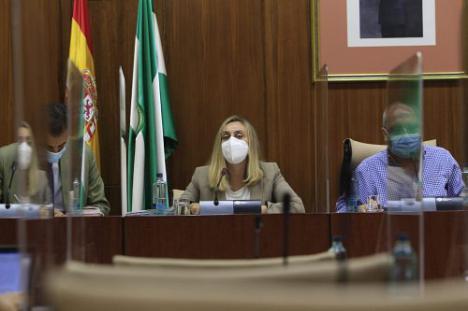 La Junta retoma el proyecto de conexión entre el puerto de Garrucha y la A-7