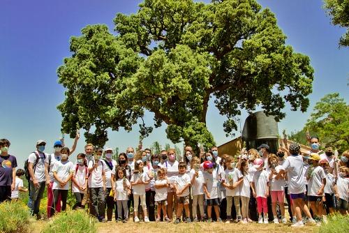 """Cosentino fomenta la biodiversidad con """"Care For the Planet"""""""