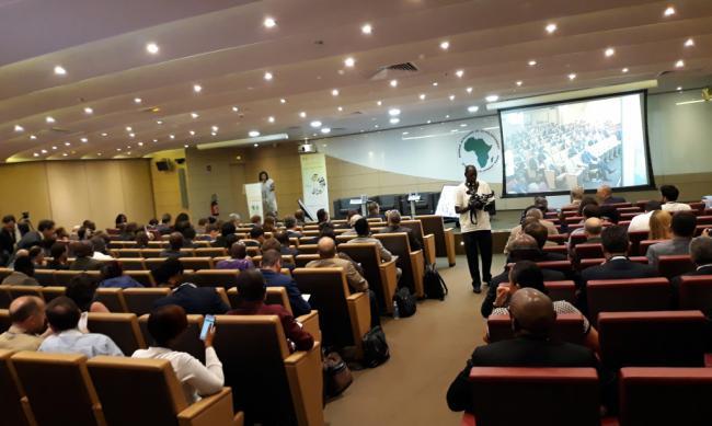 Dos empresas de Almería apuntan a Costa de Marfil