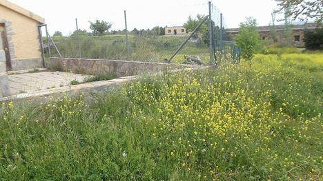 Cinco millones para los 4 GDR de la provincia de Almería