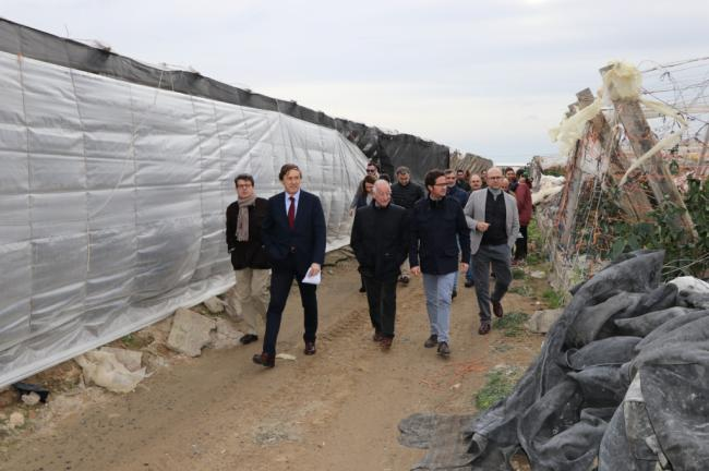 El PP al Gobierno la rebaja fiscal que demandan los agricultores almerienses