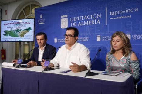 'Sabores Almería' proyecta el VIII Ecomercado de Abla dedciado a la Uva de Mesa