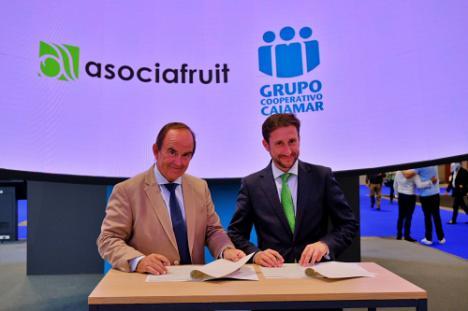 Asociafruit y Cajamar apoyarán la financiación del sector hortofruticola