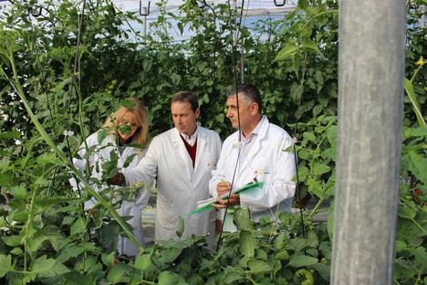 Otorgados los I Premios de la Cátedra Cajamar-UPM de Economía y Política Agraria a los mejores Trabajos Fin de Máster