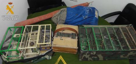Un investigado por utilizar medios de caza ilegal en Tabernas