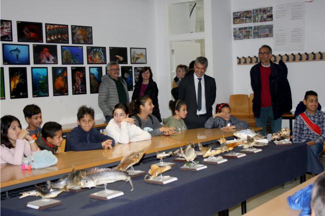 Estudiantes de primaria y secundaria aprenden en la UAL los beneficios del mar