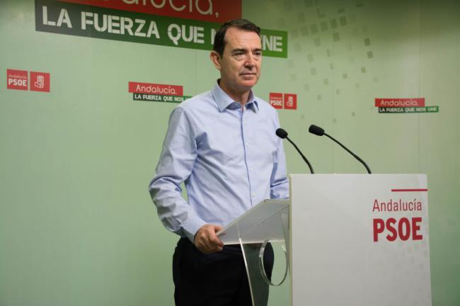 Pérez Navas pone en valor la inversión en el AVE en el mandato de Sánchez
