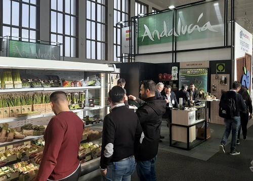 Almería vende el 60% de las hortalizas andaluzas
