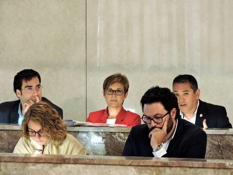 El PSOE saca adelante sus mociones sobreturismo inclusivo y la recuperación del camino viejo a Enix