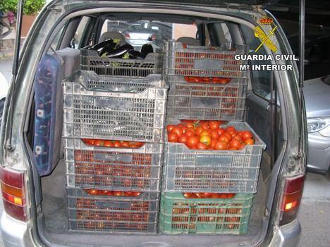 Sorprendidos con dos furgonetas llenas de tomates y sandías robadas