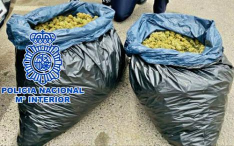 Detenido en Roquetas con 11 sacos de marihuana en el coche