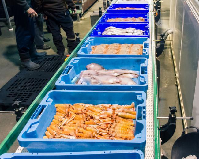 Diez millones más para ayudas la transformación de productos pesqueros y acuícolas