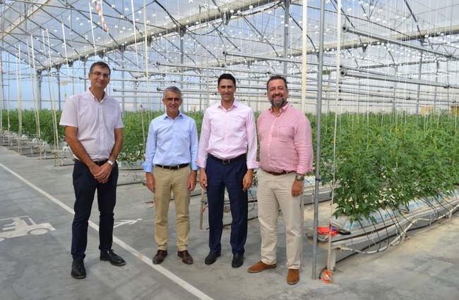 Cajamar y Signify investigan el crecimiento de cultivos agrícolas con iluminación artificial