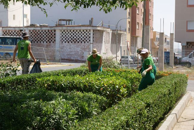 El Área de Servicios Del Ayuntamiento De Vícar Contabilizó 10.000 Actuaciones en 2018