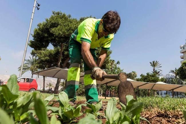 El Ayuntamiento aprueba la continuidad de Cespa en el mantenimiento de espacios verdes por 2,5 millones