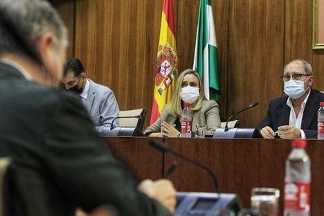 Exconsejero del PSOE presume de Autovía del Almanzora y la consejera Carazo le da los datos