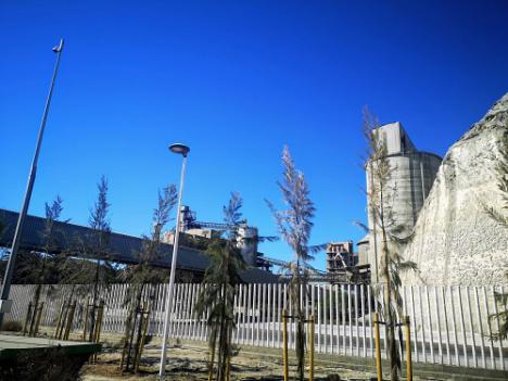 La Autoridad Portuaria levanta una pantalla vegetal en el Puerto de Carboneras