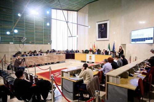 El Pleno reclama solución a la A 7 y 'El Cañarete'