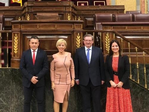 Los diputados y senadores del PSOE de Almería en trece comisiones