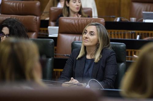 La consejera Carazo denuncia la merma de conexiones ferroviarias a Granada y Almería
