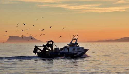 Adra cuenta con una nueva Organización de Productores Pesqueros