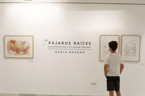 La Galería Alfareros reabre con 'Pájaros raíces' de María Moreno