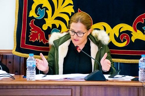 La alcaldesa de Níar llevará a pleno ayuda directa para establecimientos obligados a cerrar
