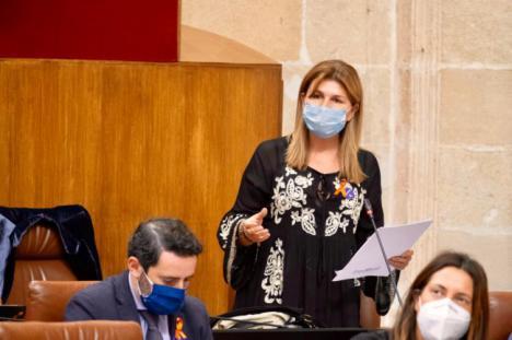 """Espinosa: """"El PP ha taponado las graves heridas que el PSOE dejó en la sanidad almeriense"""""""