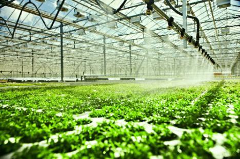La Junta apuesta por fuentes alternativas para mejorar el uso del agua en la agricultura