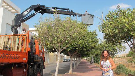 Vera sustituye las luminarias para ahorrar un millón de euros en 10 años