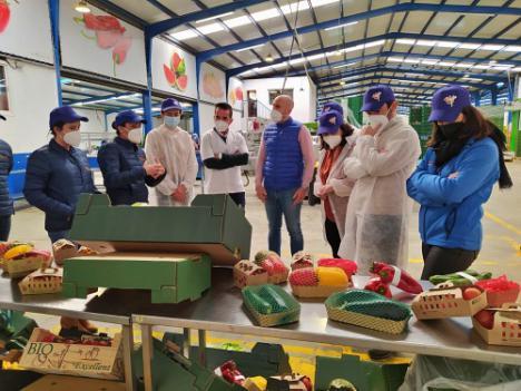 """El PPA destaca el """"potencial exportador"""" de la agricultura de Almería"""