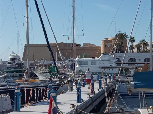 Licitada la redacción del proyecto de la nueva lonja del puerto de Roquetas
