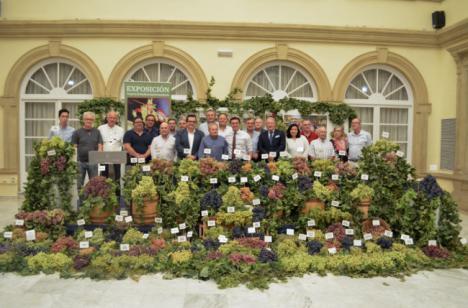 Almería es la provincia con más variedades de uva