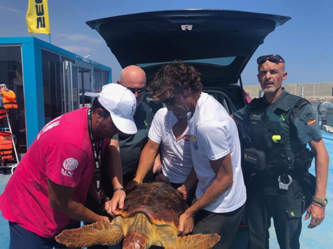 La Guardia Civil auxilia una tortuga boba enredada en plásticos en Garrucha