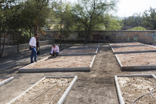 """El alcalde destaca el """"uso social"""" de los huertos urbanos de Piedras Redondas, Los Ángeles y Colonia Araceli"""