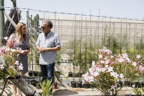 El nuevo Plan Savia llenará parques y jardines de los 103 con más de 57.000 plantas y árboles