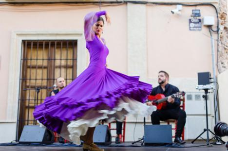 'Las tardes del IEA' abren al mundo 'El Flamenco de Almería' en formato telemático
