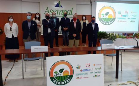 Agrintal agrupa a las empresas agroalimentarias de agricultura intensiva al aire libre