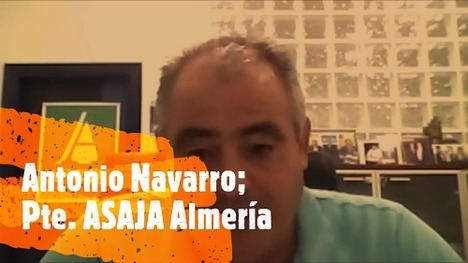 Navarro (ASAJA): 'Marrueco lleva 9 años metiendo tomate al mismo precio'