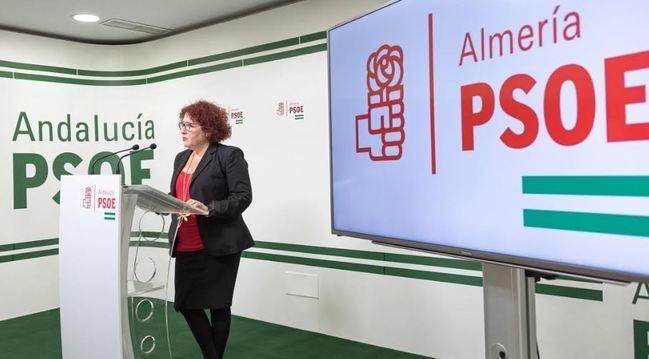 El PSOE presenta mociones en los ayuntamientos por la igualdad el 25N