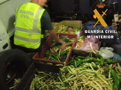 Descubren oculta entre verdudas a una persona en un camión en el Puerto de Almería