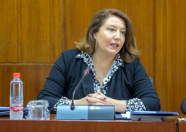 La Junta 'trabaja' en una solución para el acceso a Mónsul, Genoveses y El Barronal