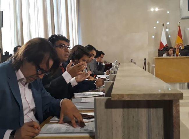 Ciudadanos vota en contra del traslado del arbolado de la Plaza Vieja