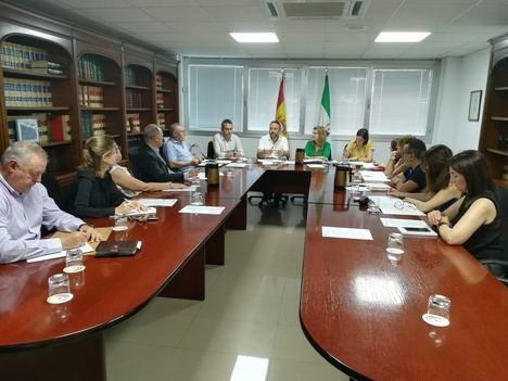El SAE aborda los nuevos incentivos de la Junta a la contratación indefinida y en prácticas
