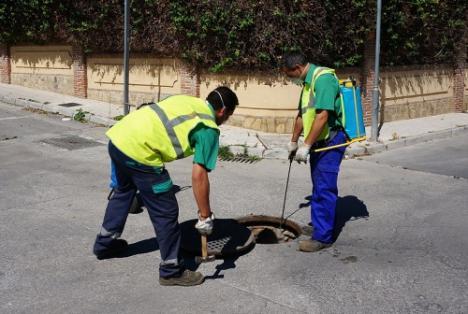 Continúa el saneamiento del Bulevar Ciudad De Vícar Y El De La Paz