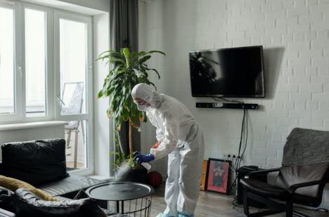 La importancia de saber elegir una buena empresa especializada en el control de plagas